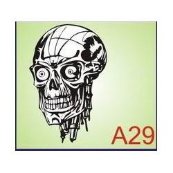 0029 Czaszka