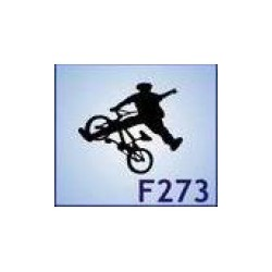 0273 Sport