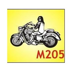 0205 Moto