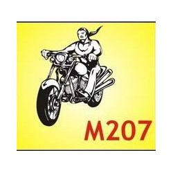 0207 Moto