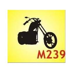 0239 Moto