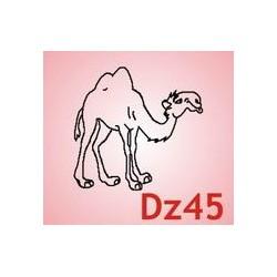 0045 Zwierzęta