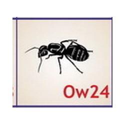 0024 Owady