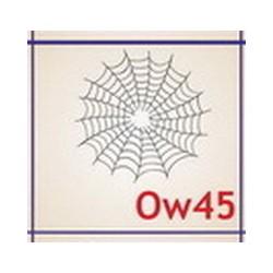 0045 Owady