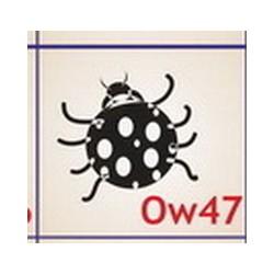 0047 Owady