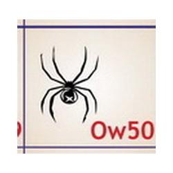 0050 Owady