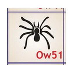 0051 Owady