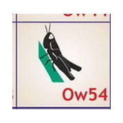 0054 Owady