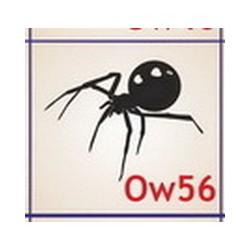 0056 Owady