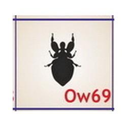0069 Owady