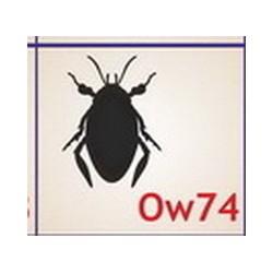0074 Owady
