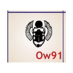 0091 Owady