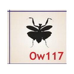 0117 Owady