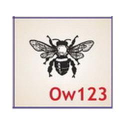 0123 Owady